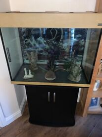 Fish tank aquarium set up including heater filter ornaments and plants