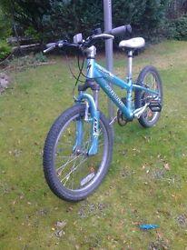 Child's 'Specialized' Mountain Bike