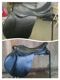 Equestrian clear out