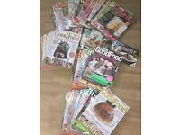 Collection of GoodFood magazines