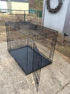 XL Dog Kennel by Petmate
