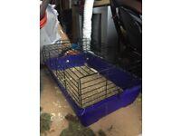 Large guinea pig/ rabbit indoor cage