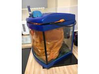 Fish tank and bits