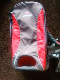 LittleLife baby/toddler carrier