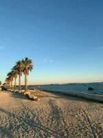 Ferienwohnungen auf der Insel Vir Dalmatien Kroatien Bayern - Reichertshofen Vorschau