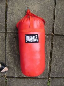 Punch bag by Lonsdale, compact size, chin up bar