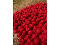 Pair of Dwell red cushions