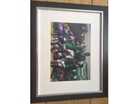 Signed Northern Ireland picture