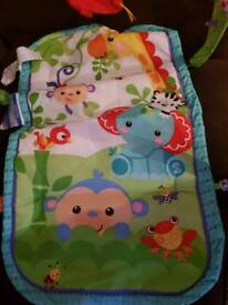 Fisher price baby play mat