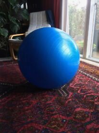 Exercise ball; good for yoga, pilates or sitting on at desk for posture and core strength.