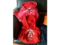Abercrombie & Fitch/ Hollister Hoodies