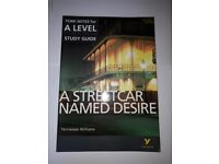 A Streetcar Named Desire: York Notes for A-level English Literature Revision Guide