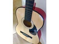 Acoustic Guitar for Beginner