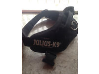 Julius K9 Powerharness - Used Once - Size 2 - Ferndown, Dorset