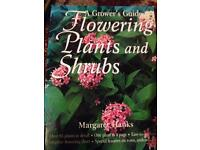 Flowering plants and shrubs