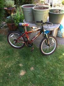 Yougsters red bike. Good condition but needs a spruce up.