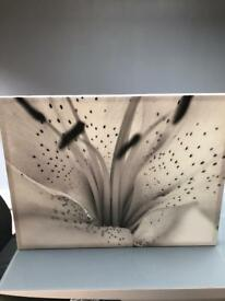 Next canvas picture frame for sale