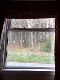 Double Room in Idyllic Forest Location