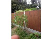Close board fence panel