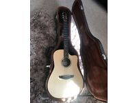 Electro Acoustic Faith Guitar (w/ Hard Case)