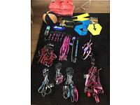 Harness, lead, collars and beds