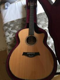 Taylor Limited Edition Electro Acoustic Guitar