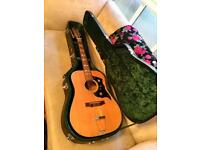 Vintage 1970s Hummingbird Style 12 String with Hard Case