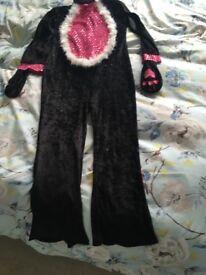 Girls cat fancy dress outfit