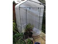 Full height walk in greenhouse with shelving open to offers was £70 great condition.