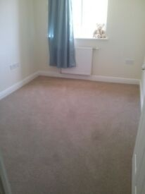 Carpet and underlay, 2.4x3.2m, like new