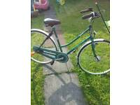 Gazelle furore bike adult