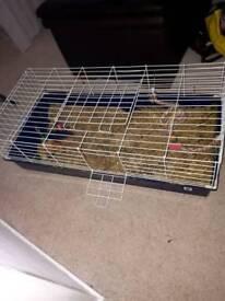 Indoor Animal home.