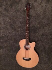 5 string electro acoustic bass
