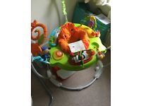 Baby Bouncer Fisher Price Jumperoo great condition ONO