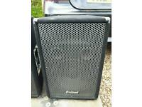 "2x 12"" Stage/Studio DJ Speakers - Pa System - Band Equiptment! NEW"
