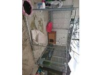 Dog run 10ft x 5ft kennel not included