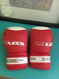 Leco boxing gloves
