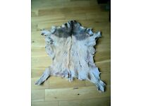 GENUINE GOATSKIN RUG/WALL HANGING
