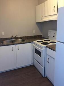 Bachelor Suite Available, Newly Renovated