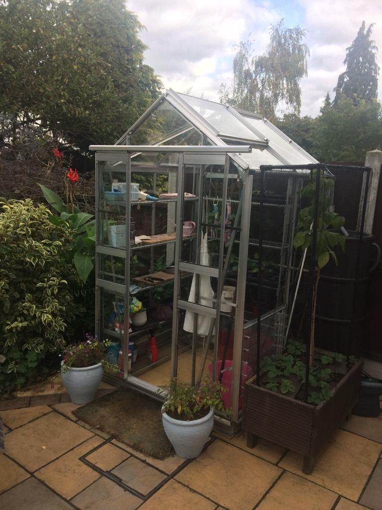 Greenhouse (4ft x 4ft) plus staging