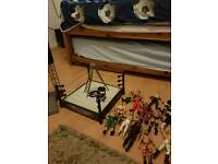 WWE wrestling figures,ring and other bits