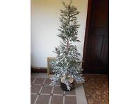 alaskan flocked christmas tree in box plus plastic bag for trees