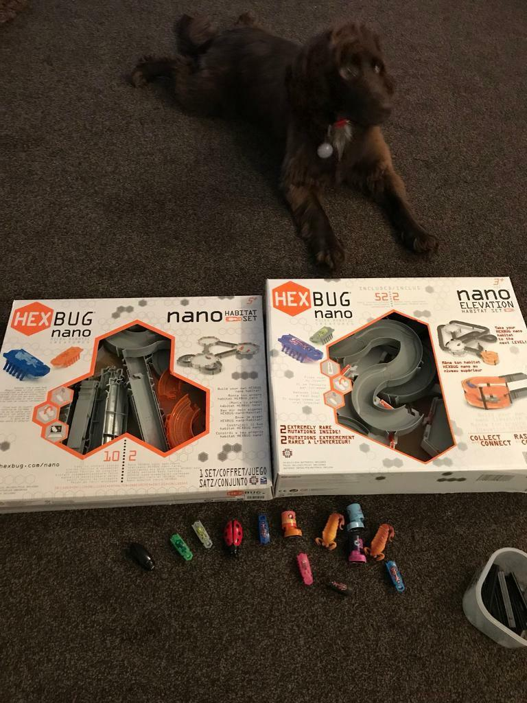 Games hex bug toys