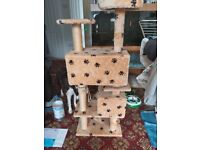 Cat scratch post with dens