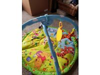 Winnie the Pooh motion playgym