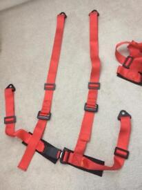 4 point harness (pair) track car