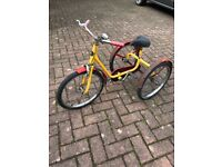 VINTAGE CHILD'S TRICYCLE....PASHLEY 'PICKLE' IN RED AND YELLOW.