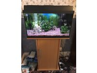 Jewel Rekord 63 Litre Fish Tank with Stand