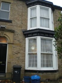 Fantastic Large duplex 2 Bed Flat in the heart of Nether Edge. £595