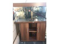 Juwel rio 180 dark brown tropical/marine fish tank aquarium